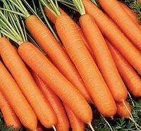 Морковь против артериального давления