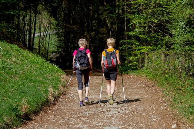 Скандинавская ходьба, как подобрать палки для скандинавской ходьбы